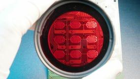 Filtro da foto da câmera vídeos de arquivo