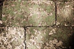 Filtro do vintage: bloco de pedra do tijolo do grunge com musgo da grama na ressaca fotos de stock