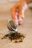 Filtro vicino del tè della mano Immagini Stock