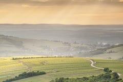 Filtrujący światło nad Sancerre winnicami Zdjęcia Royalty Free