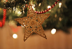 Filz-Weihnachtsstern-Verzierung Lizenzfreies Stockfoto