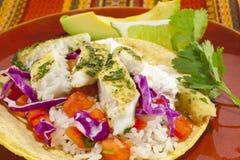 Fim-acima da refeição do Tacos de peixes Fotos de Stock Royalty Free