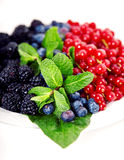 Feche acima das airelas, dos mirtilos, dos mulberries e da hortelã Imagens de Stock Royalty Free