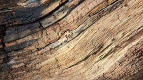 Fim acima das texturas de Cracken de madeiras velhas fotos de stock royalty free