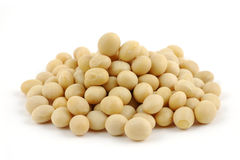 Fim acima de feijões da soja Fotografia de Stock