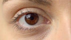 Fim acima do olho marrom bonito que abre a beleza natural macro da íris humana, mulher, macro video estoque
