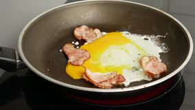 Fim acima Dois ovos quebram em uma frigideira quente com bacon fritado Caf? da manh? e conceito da cozinha video estoque