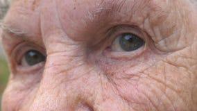 Fim acima dos olhos cinzentos da mulher idosa com os enrugamentos em torno deles Retrato da av? que olha na c?mera com um triste video estoque