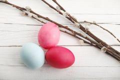 Fim-acima dos ovos da páscoa brancos com catkin imagem de stock