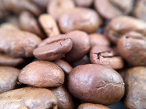 Fim acima/feijões de café macro Imagem de Stock Royalty Free