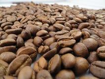 Fim acima/feijões de café macro Imagem de Stock