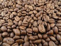 Fim acima/opinião macro feijões de café inteiros Fotos de Stock