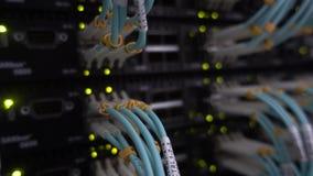 Fim azul do cabo de Optcial acima O piscamento da cremalheira do servidor conduziu verde vídeos de arquivo
