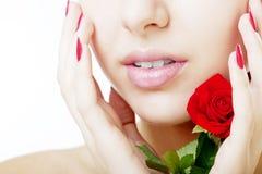 Fim bonito da face da menina acima com uma rosa à disposicão Foto de Stock Royalty Free
