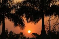 Fim bonito do por do sol do verão acima Foto de Stock Royalty Free