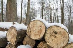 Fim cortado da lenha dos logs acima do empilhado empilhado acima da neve de madeira do inverno imagem de stock royalty free