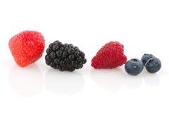 Fim da diversidade da fruta fotografia de stock royalty free