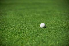 Fim da esfera de golfe acima Imagens de Stock