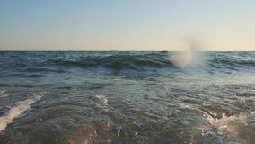 Fim da onda do mar acima, opinião de baixo ângulo, vídeo de movimento lento do sunrsie video estoque