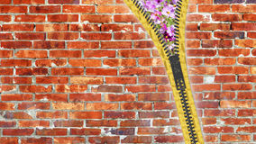 fim da rendição 3d acima da textura do zíper no fundo isolado com Imagem de Stock Royalty Free