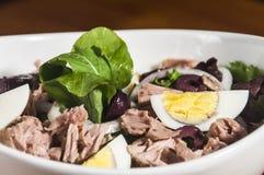 Fim da salada de atum acima Fotos de Stock Royalty Free