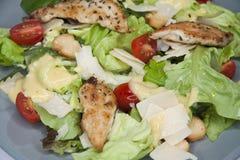 Fim da salada de Caesar acima Foto de Stock Royalty Free