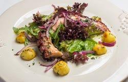 Fim da salada do polvo acima Imagens de Stock Royalty Free
