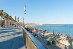 Fim da tarde da praia de Barcelonetta com sombras longas da palmeira fotos de stock
