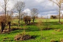 Fim da tarde em Flanders do leste Imagem de Stock Royalty Free