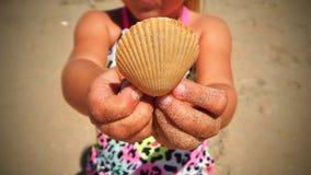 Fim da terra arrendada da menina acima do shell Fotos de Stock Royalty Free