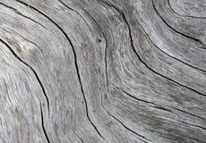 Fim da textura da madeira acima da foto Fundo de madeira branco e cinzento imagens de stock royalty free
