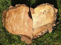 Fim dado forma coração do log acima Fotografia de Stock