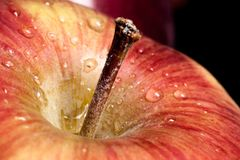Fim de Apple acima Imagem de Stock Royalty Free