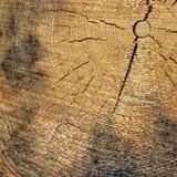 Fim de madeira velho da textura do quadro do quadrado da grão da cor natural acima Foto de Stock Royalty Free