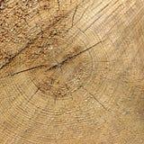 Fim de madeira velho da textura do quadro do quadrado da grão da cor natural acima Imagens de Stock