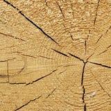 Fim de madeira velho da textura do quadro do quadrado da grão da cor natural acima Foto de Stock