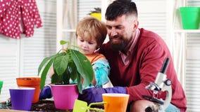 Fim de semana feliz Pai e filho moisturizing O menino polvilha a ?gua na flor da planta Experi?ncias no jardim da casa vídeos de arquivo