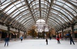 Fim de semana Virgínia da abertura da pista de patinagem do gelo Fotos de Stock Royalty Free