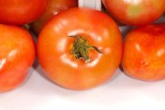 Fim de Tomatoe acima Foto de Stock