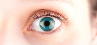 Fim detalhado acima de uns olhos azuis na definição alta imagens de stock