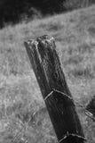 Fim do borne da cerca acima Foto de Stock Royalty Free