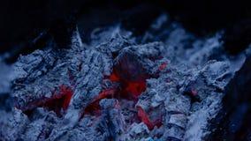 Fim do carvão vegetal do fogo da fogueira acima fotografia de stock royalty free