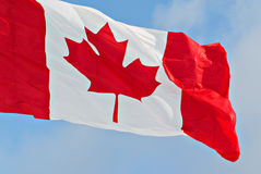 Fim do voo da bandeira de Canadá acima Imagem de Stock