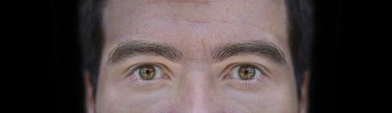 Fim grande acima da imagem dos olhos marrons do homem novo com fundo preto Imagens de Stock