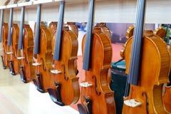 Fim inteiro do violino da fileira acima, adôbe rgb Imagem de Stock Royalty Free