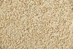 Fim italiano branco do arroz de Arborio acima do fundo Imagem de Stock