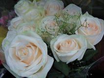Fim lindo & atrativo acima de Rose Flowers Bouquet branca fotografia de stock royalty free