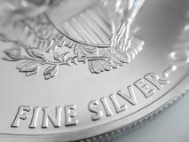 Fim macro acima de um americano Eagle Bullion Coin da prata de 999% fotografia de stock royalty free