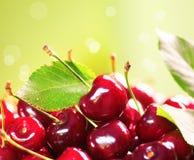Fim maduro fresco da cereja acima Imagens de Stock