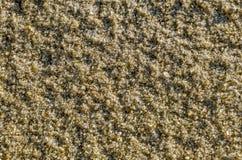 Fim natural da areia do rio acima Foto de Stock Royalty Free